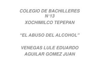 """COLEGIO DE BACHILLERES N°13  XOCHIMILCO TEPEPAN """"EL ABUSO DEL ALCOHOL"""" VENEGAS LULE EDUARDO"""
