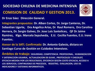 SOCIEDAD CHILENA DE MEDICINA INTENSIVA  COMISION DE  CALIDAD Y GESTION 2013.