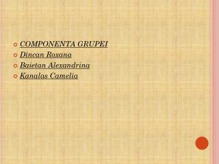 COMPONENTA GRUPEI Dincan  Roxana Baietan  Alexandrina Kanalas  Camelia