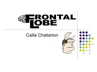 Callie Chatterton