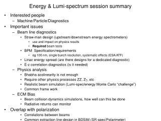 Energy & Lumi-spectrum session summary