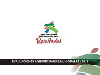 EVALUACIONES AGROPECUARIAS MUNICIPALES - 2013