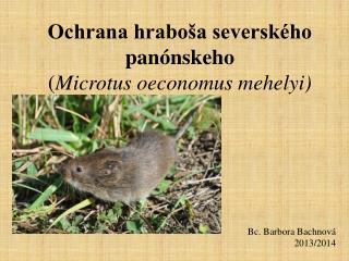 Ochrana hraboša severského panónskeho ( Microtus oeconomus mehelyi )