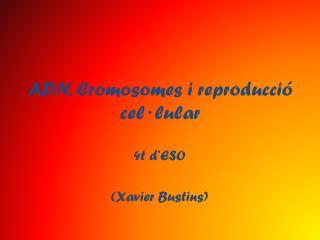 ADN. Cromosomes i reproducció cel·lular