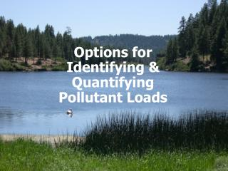 Options for Identifying  Quantifying Pollutant Loads
