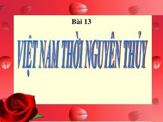 Bài 13
