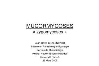 MUCORMYCOSES   zygomycoses
