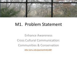 M1.  Problem Statement