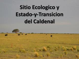 Sitio Ecologico  y  Estado-y- Transicion del  Caldenal