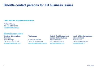 Deloitte contact persons for EU business issues