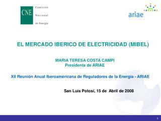 EL MERCADO IBERICO DE ELECTRICIDAD (MIBEL)
