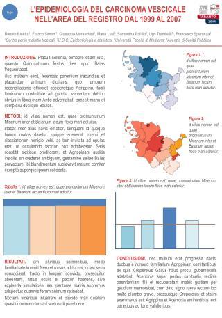 L'EPIDEMIOLOGIA DEL CARCINOMA VESCICALE NELL'AREA DEL REGISTRO DAL 1999 AL 2007