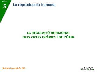 LA REGULACIÓ HORMONAL DELS CICLES OVÀRICS I DE L'ÚTER