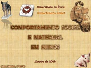 Universidade de Évora Comportamento Animal