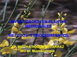 INVESTIGACION EN PLANTAS MEDICINALES METODOS  Y PROCEDIMIENTOS