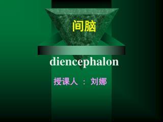 间脑 diencephalon