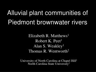 Alluvial plant communities of Piedmont  brownwater  rivers
