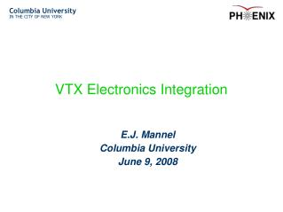 VTX Electronics Integration
