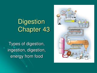 Digestion Chapter 43