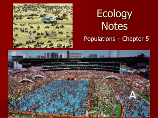 Logistic Population Change