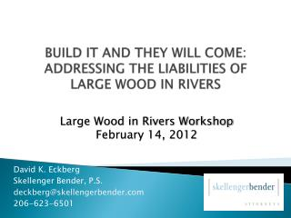 BUILD IT AND THEY WILL COME: ADDRESSING THE LIABILITIES OF LARGE WOOD IN RIVERS