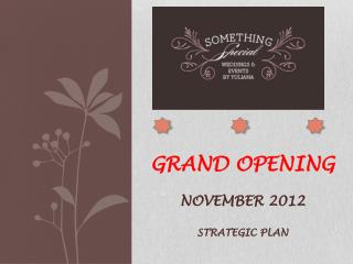 Grand opening November 2012 Strategic Plan
