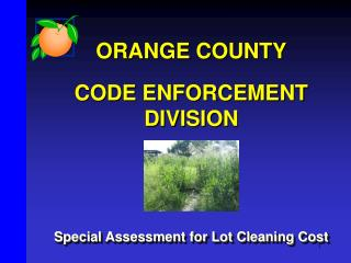 ORANGE COUNTY CODE ENFORCEMENT DIVISION Special Assessment for Lot Cleaning Cost
