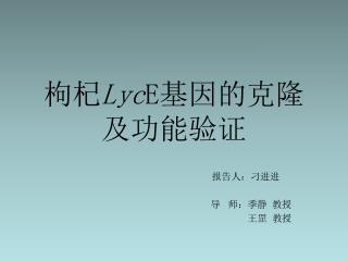 枸杞 Lyc E 基因的克隆及功能验证