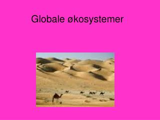 Globale �kosystemer