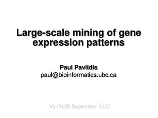 Large-scale mining of gene expression patterns