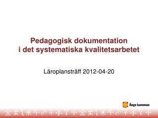 Pedagogisk dokumentation i det systematiska kvalitetsarbetet