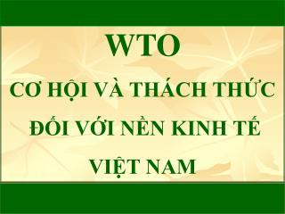 WTO CO HI V  TH CH THC   I VI NN KINH T  VIT NAM