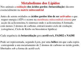 Metabolismo dos Lípidos