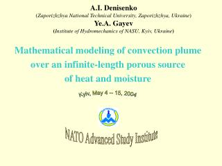 Mathematical modeling of convection plume over an infinite-length porous source