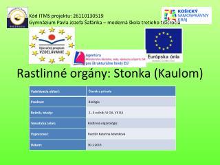 Rastlinné orgány: Stonka (Kaulom)