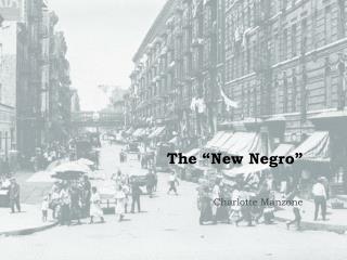 "The ""New Negro"""