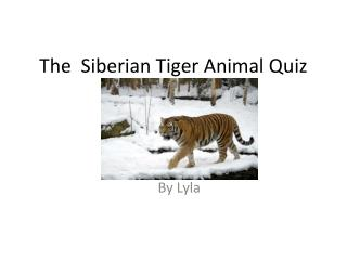 The  Siberian  Tiger  A nimal  Q uiz