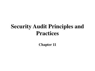 Security Audit Principles and Practices
