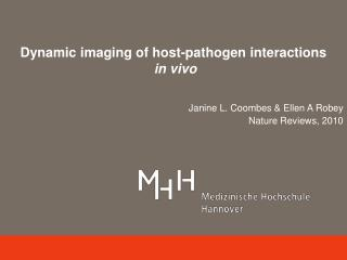 Dynamic imaging of host-pathogen interactions in vivo