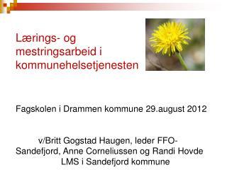 Lærings- og  mestringsarbeid i  kommunehelsetjenesten Fagskolen i Drammen kommune 29.august 2012
