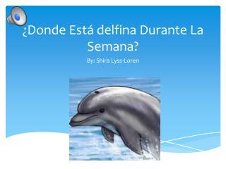 ¿ Donde Está delfina  Durante La  Semana ?