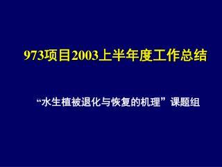 973 项目 2003 上半年度工作总结