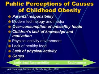 Public Perceptions of Causes of Childhood Obesity