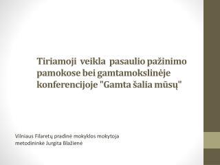 Vilniaus Filaretų pradinė mokyklos mokytoja metodininkė Jurgita Blažienė