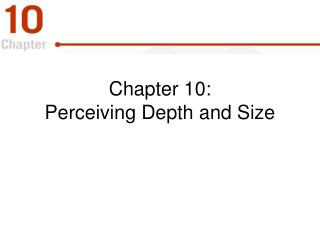 Chapter 10:  Perceiving Depth and Size