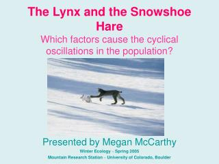 The Lynx and the Snowshoe Hare Which factors cause the cyclical oscillations in the population?