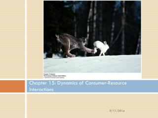 Chapter 15: Dynamics of Consumer-Resource Interactions