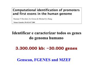 Computational identification of promoters and first exons in the human genome