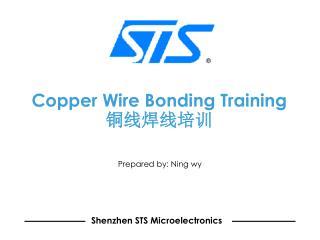 Copper Wire Bonding Training 铜线焊线培训