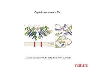 JJ Ipsaro  et al. Nature 000 ,  1-5  (2012) doi:10.1038/nature11502